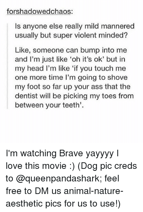 Memes, Brave, and Braves: forshadowedchaos:  ls anyone else really mild mannered  usually but super violent minded?  Like, someone can bump into me  and I'm just like 'oh it's ok' but in  my head I'm like 'if you touch me  one more time I'm going to shove  my foot so far up your ass that the  dentist will be picking my toes from  between your teeth. I'm watching Brave yayyyy I love this movie :) (Dog pic creds to @queenpandashark; feel free to DM us animal-nature-aesthetic pics for us to use!)