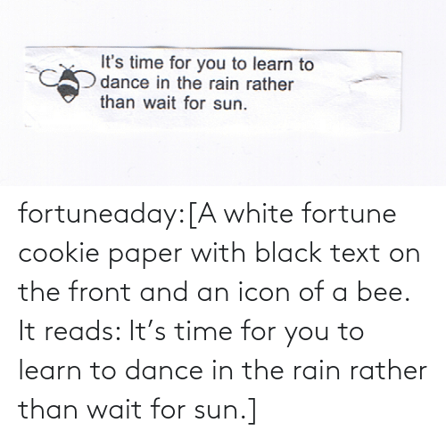 Front: fortuneaday:[A white fortune cookie paper with black text on the front and an icon of a bee. It reads: It's time for you to learn to dance in the rain rather than wait for sun.]