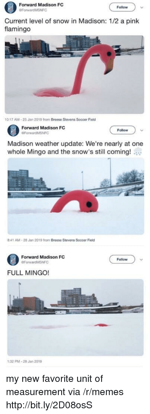 a pink: Forward Madison FC  Follow  Current level of snow in Madison: 1/2 a pink  flamingo  0:17 AM-25 Jan 2019 from Breese Stevens Soccer Field  Forward Madison FC  OForwardMSNFC  Follow  Madison weather update: We're nearly at one  whole Mingo and the snow's still coming!  8:41 AM-28 Jan 2019 from Breese Stevens Soccer Field  Forward Madison FC  Follow  FULL MINGO!  PMA-28 Jan 2019 my new favorite unit of measurement via /r/memes http://bit.ly/2D08osS