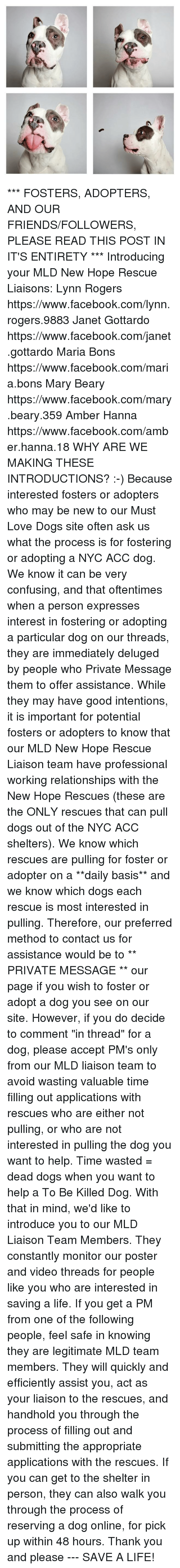 "Dogs, Facebook, and Friends: ***  FOSTERS, ADOPTERS, AND OUR FRIENDS/FOLLOWERS, PLEASE READ THIS POST IN IT'S ENTIRETY ***  Introducing your MLD New Hope Rescue Liaisons:  Lynn Rogers https://www.facebook.com/lynn.rogers.9883  Janet Gottardo https://www.facebook.com/janet.gottardo  Maria Bons https://www.facebook.com/maria.bons  Mary Beary https://www.facebook.com/mary.beary.359  Amber Hanna https://www.facebook.com/amber.hanna.18  WHY ARE WE MAKING THESE INTRODUCTIONS?  :-)  Because interested fosters or adopters who may be new to our Must Love Dogs site often ask us what the process is for fostering or adopting a NYC ACC dog. We know it can be very confusing, and that oftentimes when a person expresses interest in fostering or adopting a particular dog on our threads, they are immediately deluged by people who Private Message them to offer assistance.   While they may have good intentions, it is important for potential fosters or adopters to know that our MLD New Hope Rescue Liaison team have professional working relationships with the New Hope Rescues (these are the ONLY rescues that can pull dogs out of the NYC ACC shelters). We know which rescues are pulling for foster or adopter on a **daily basis** and we know which dogs each rescue is most interested in pulling.   Therefore, our preferred method to contact us for assistance would be to ** PRIVATE MESSAGE ** our page if you wish to foster or adopt a dog you see on our site. However, if you do decide to comment ""in thread"" for a dog, please accept PM's only from our MLD liaison team to avoid wasting valuable time filling out applications with rescues who are either not pulling, or who are not interested in pulling the dog you want to help. Time wasted = dead dogs when you want to help a To Be Killed Dog.  With that in mind, we'd like to introduce you to our MLD Liaison Team Members. They constantly monitor our poster and video threads for people like you who are interested in saving a life. If you get a PM from one of the following people, feel safe in knowing they are legitimate MLD team members. They will quickly and efficiently assist you, act as your liaison to the rescues, and handhold you through the process of filling out and submitting the appropriate applications with the rescues. If you can get to the shelter in person, they can also walk you through the process of reserving a dog online, for pick up within 48 hours.  Thank you and please --- SAVE A LIFE!"