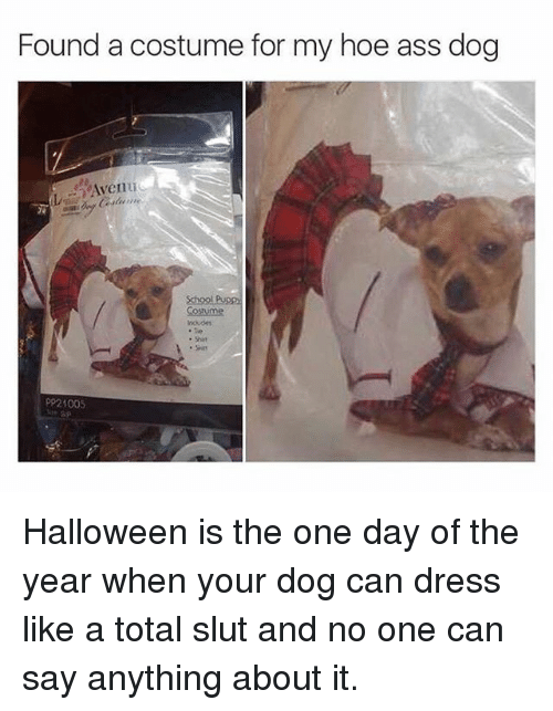 """Ass, Halloween, and Hoe: Found a costume for my hoe ass dog  """"Aven u  School Pupsp  Costuime  P921005 Halloween is the one day of the year when your dog can dress like a total slut and no one can say anything about it."""