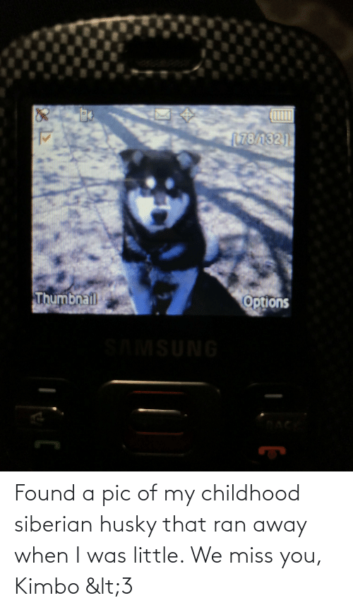We Miss You: Found a pic of my childhood siberian husky that ran away when I was little. We miss you, Kimbo <3