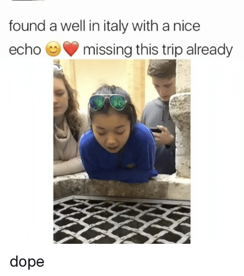 Dope, Funny, and Memes: found a well in italy with a nice  echo O missing this trip already dope