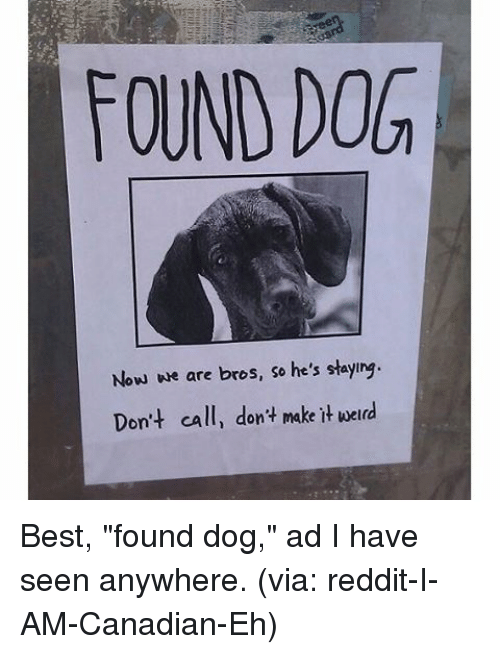 "SIZZLE: FOUND DOG  Now we are bros, so he's staylng  Don't call, don't make it werd Best, ""found dog,"" ad I have seen anywhere. (via: reddit-I-AM-Canadian-Eh)"