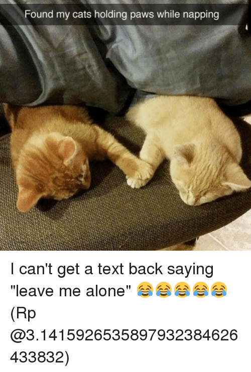 """Cant Get A Text Back: Found my cats holding paws while napping I can't get a text back saying """"leave me alone"""" 😂😂😂😂😂 (Rp @3.1415926535897932384626433832)"""