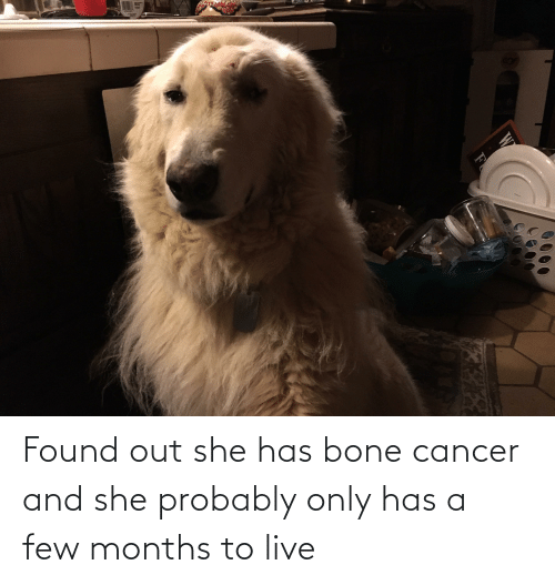 Cancer: Found out she has bone cancer and she probably only has a few months to live
