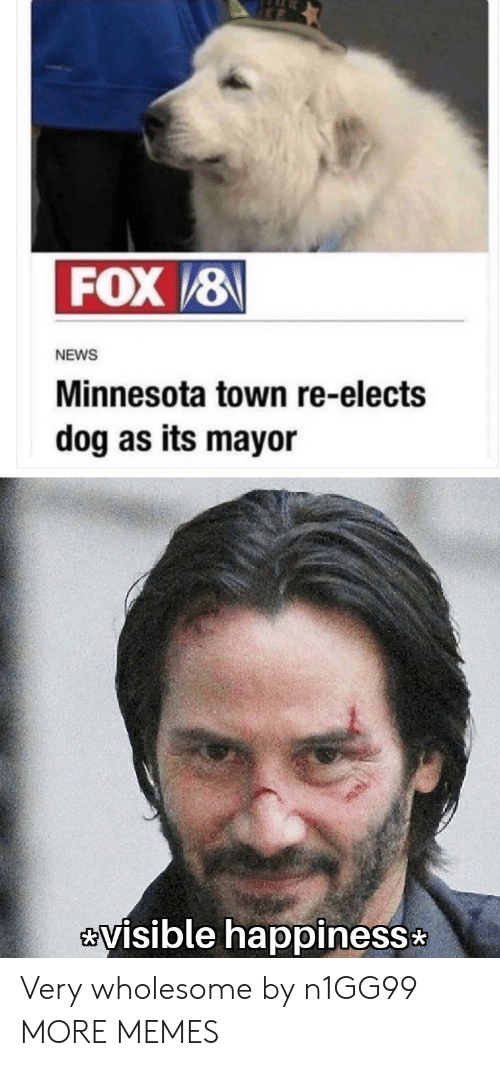mayor: FOX/8  NEWS  Minnesota town re-elects  dog as its mayor  visible happiness Very wholesome by n1GG99 MORE MEMES