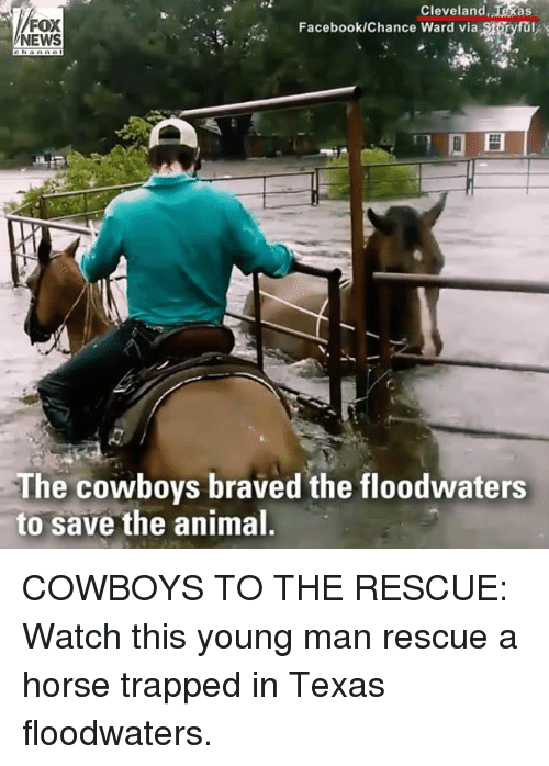 Dallas Cowboys, Facebook, and Memes: FOX  NEWS  Cleveland, Texas  Facebook/Chance Ward via SsSryfa  The cowboys braved the floodwaters  to save the animal COWBOYS TO THE RESCUE: Watch this young man rescue a horse trapped in Texas floodwaters.