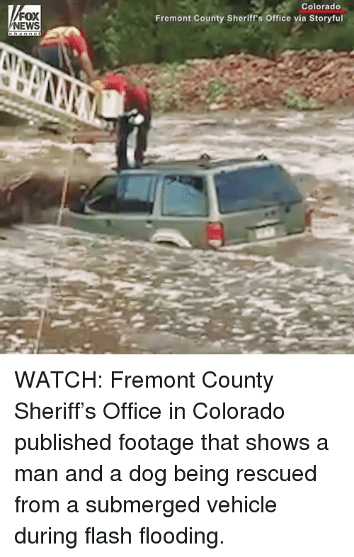 Memes, News, and Colorado: FOX  NEWS  Colorado  Fremont County Sheriff's Office via Storyful WATCH: Fremont County Sheriff's Office in Colorado published footage that shows a man and a dog being rescued from a submerged vehicle during flash flooding.