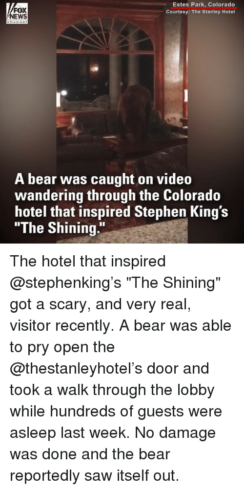 "Memes, News, and Saw: FOX  NEWS  Estes Park, Colorado  Courtesy: The Stanley Hotel  A bear was caught on video  wandering through the Colorado  hotel that inspired Stephen King's  ""The Shining."" The hotel that inspired @stephenking's ""The Shining"" got a scary, and very real, visitor recently. A bear was able to pry open the @thestanleyhotel's door and took a walk through the lobby while hundreds of guests were asleep last week. No damage was done and the bear reportedly saw itself out."