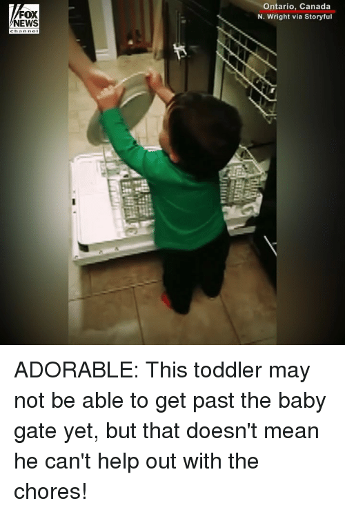 Memes, News, and Canada: FOX  NEWS  Ontario, Canada  N. Wright via Storyful ADORABLE: This toddler may not be able to get past the baby gate yet, but that doesn't mean he can't help out with the chores!