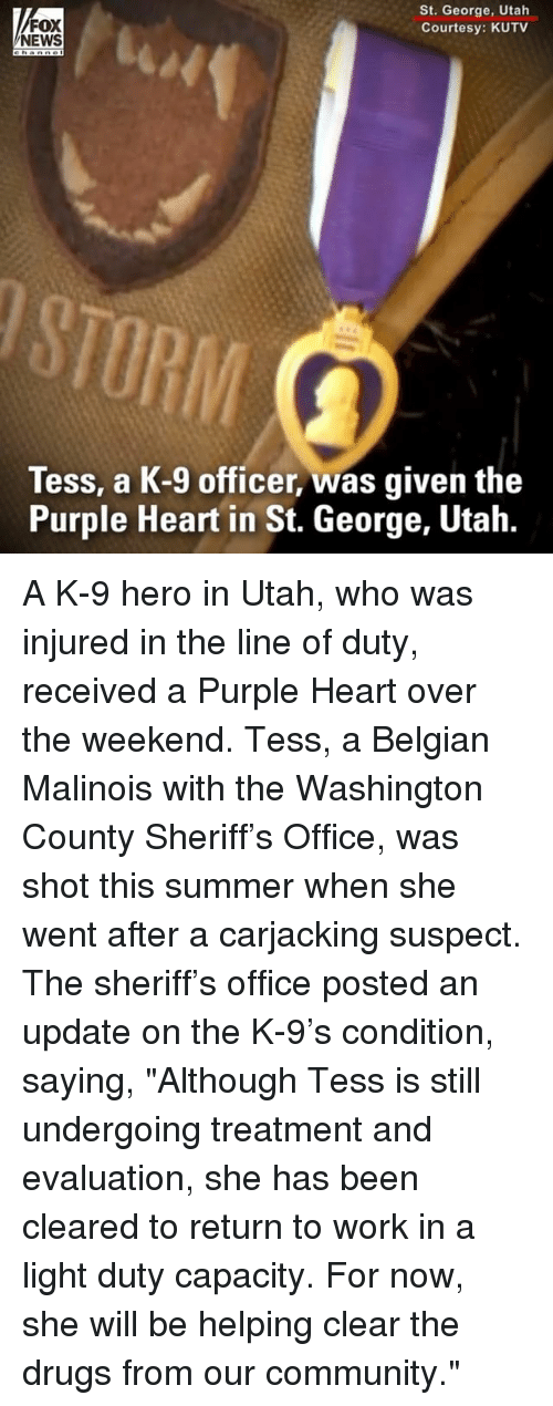 """Community, Drugs, and Memes: FOX  NEWS  St. George, Utah  Courtesy: KUTV  RIM  Tess, a K-9 officer, was given the  Purple Heart in St. George, Utah. A K-9 hero in Utah, who was injured in the line of duty, received a Purple Heart over the weekend. Tess, a Belgian Malinois with the Washington County Sheriff's Office, was shot this summer when she went after a carjacking suspect. The sheriff's office posted an update on the K-9's condition, saying, """"Although Tess is still undergoing treatment and evaluation, she has been cleared to return to work in a light duty capacity. For now, she will be helping clear the drugs from our community."""""""