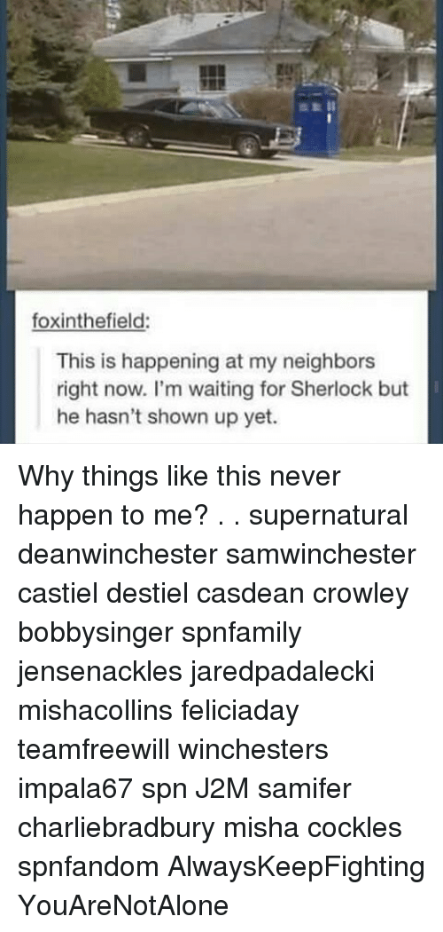 Sherlocking: foxinthefield:  This is happening at my neighbors  right now. I'm waiting for Sherlock but  he hasn't shown up yet. Why things like this never happen to me? . . supernatural deanwinchester samwinchester castiel destiel casdean crowley bobbysinger spnfamily jensenackles jaredpadalecki mishacollins feliciaday teamfreewill winchesters impala67 spn J2M samifer charliebradbury misha cockles spnfandom AlwaysKeepFighting YouAreNotAlone
