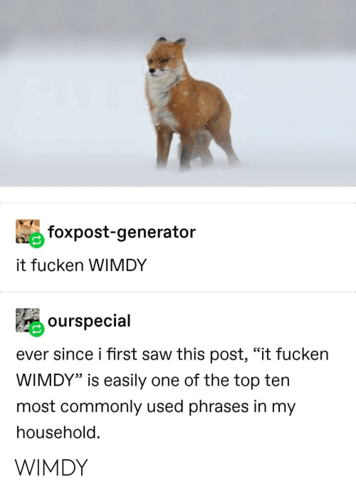 """generator: foxpost-generator  it fucken WIMDY  ourspecial  ever since i first saw this post, """"it fucken  WIMDY"""" is easily one of the top ten  most commonly used phrases in my  household. WIMDY"""