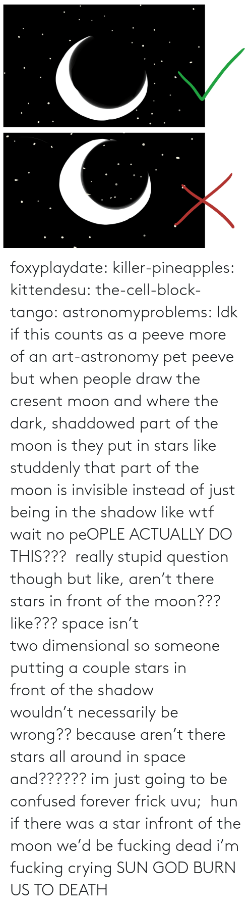 pet: foxyplaydate: killer-pineapples:  kittendesu:  the-cell-block-tango:  astronomyproblems:  Idk if this counts as a peeve more of an art-astronomy pet peeve but when people draw the cresent moon and where the dark, shaddowed part of the moon is they put in stars like studdenly that part of the moon is invisible instead of just being in the shadow like wtf  wait no peOPLE ACTUALLY DO THIS???   really stupid question though but like, aren't there stars in front of the moon??? like??? space isn't two dimensional so someone putting a couple stars in front of the shadow wouldn't necessarily be wrong?? because aren't there stars all around in space and?????? im just going to be confused forever frick uvu;   hun if there was a star infront of the moon we'd be fucking dead  i'm fucking crying    SUN GOD BURN US TO DEATH