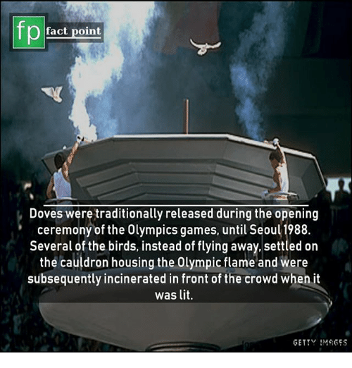 doves: fp  fact point  Doves were traditionally released during the opening  ceremony of the Olympics games, until Seoul 1988.  Several of the birds, instead of flying away,.settled on  the cauldron housing the Olympic flame and were  subsequently incinerated in front of the crowd when it  was lit.