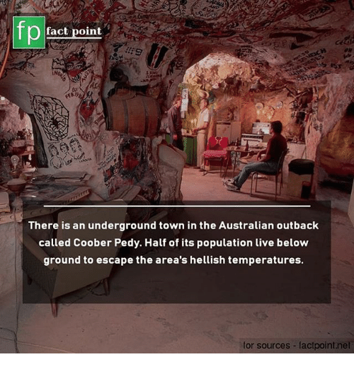 Memes, Live, and Outback: fp  fact point  : S  50  There is an underground town in the Australian outback  called Coober Pedy. Half of its population live below  ground to escape the area's hellish temperatures.  for sources lactpoint.net
