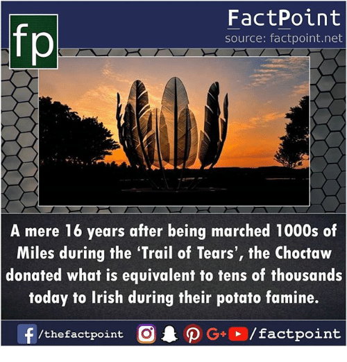 Irish, Memes, and Potato: fp  FactPoint  source: factpoint.net  A mere 16 years after being marched 1000s of  Miles during the 'Trail of Tears', the Choctaw  donated what is equivalent to tens of thousands  today to Irish during their potato famine.
