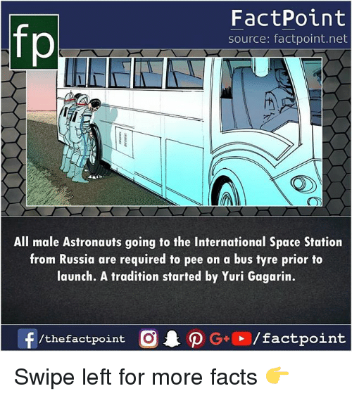 Facts, Memes, and Russia: fp  FactPoint  source: factpoint.net  All male Astronauts going to the International Space Station  from Russia are required to pee on a bus tyre prior to  launch. A tradition started by Yuri Gagarin.  /the factpoint Swipe left for more facts 👉