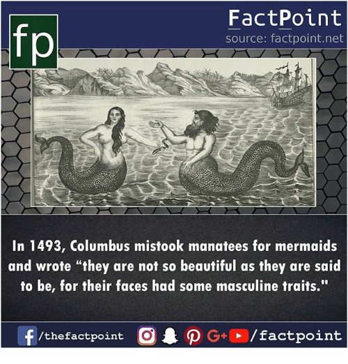 "Beautiful, Memes, and Mermaids: fp  FactPoint  source: factpoint.net  In 1493, Columbus mistook manatees for mermaids  and wrote ""they are not so beautiful as they are said  to be, for their faces had some masculine traits.""  f/thefactpoint O  P GO/factpoint"
