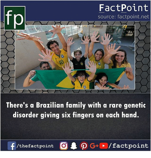 Family, Memes, and Brazilian: fp  FactPoint  source: factpoint.net  There's a Brazilian family with a rare genetic  disorder giving six t  ingers on each hand.  /thefactpoint C  actpoint
