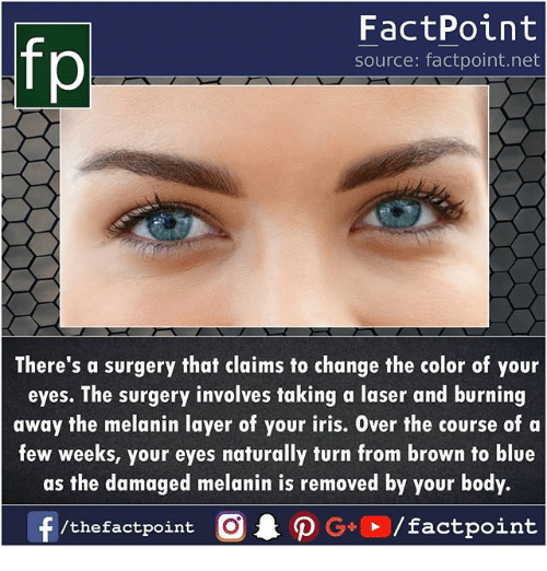 Memes, Blue, and Iris: fp  FactPoint  source: factpoint.net  There's a surgery that claims to change the color of your  eyes. The surgery involves taking a laser and burning  away the melanin layer of your iris. Over the course of a  few weeks, your eyes naturally turn from brown to blue  as the damaged melanin is removed by your body.