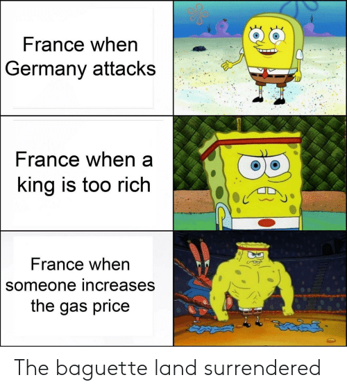 baguette: France when  Germany attacks  rance when a  ing is too rich  France when  someone increases  the gas price The baguette land surrendered
