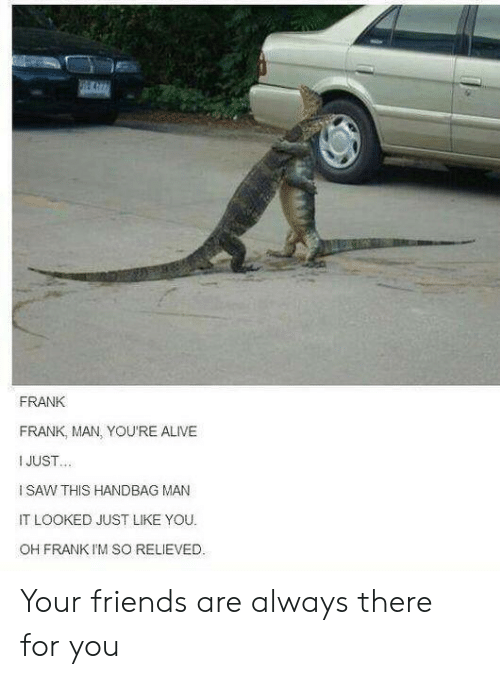 handbag: FRANK  FRANK, MAN, YOU'RE ALIVE  I JUST  I SAW THIS HANDBAG MAN  IT LOOKED JUST LIKE YOU  OH FRANK I'M SO RELIEVED. Your friends are always there for you