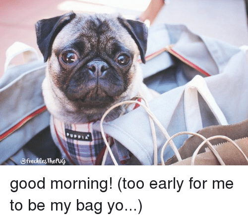 Good Morning Too : Thefug good morning too early for me to be my bag yo