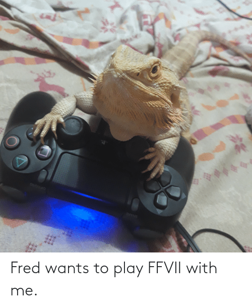 fred: Fred wants to play FFVII with me.