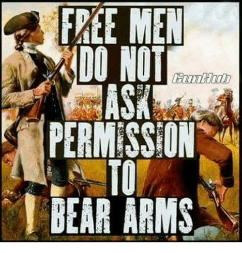 Memes, Bear, and Free: FREE MEN  DO NOT  PERMISSION  TO  BEAR ARMS