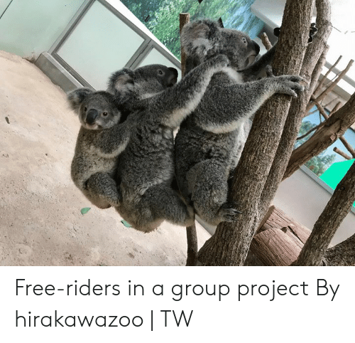 Group Project: Free-riders in a group project  By hirakawazoo | TW