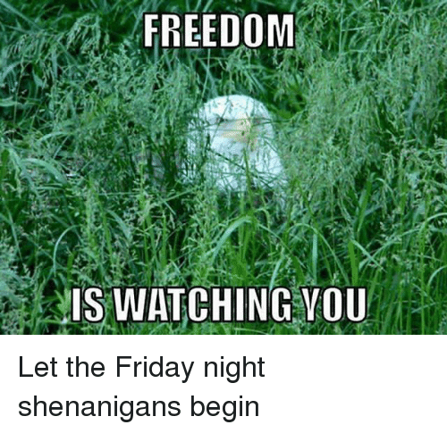 Friday, Memes, and Shenanigans: FREEDOM  IS WATCHING YOU Let the Friday night shenanigans begin