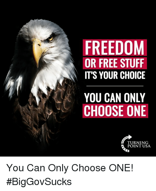 Choose one: FREEDOM  OR FREE STUFF  IT'S YOUR CHOICE  YOU CAN ONLY  CHOOSE ONE  TURNING  POINT USA You Can Only Choose ONE! #BigGovSucks