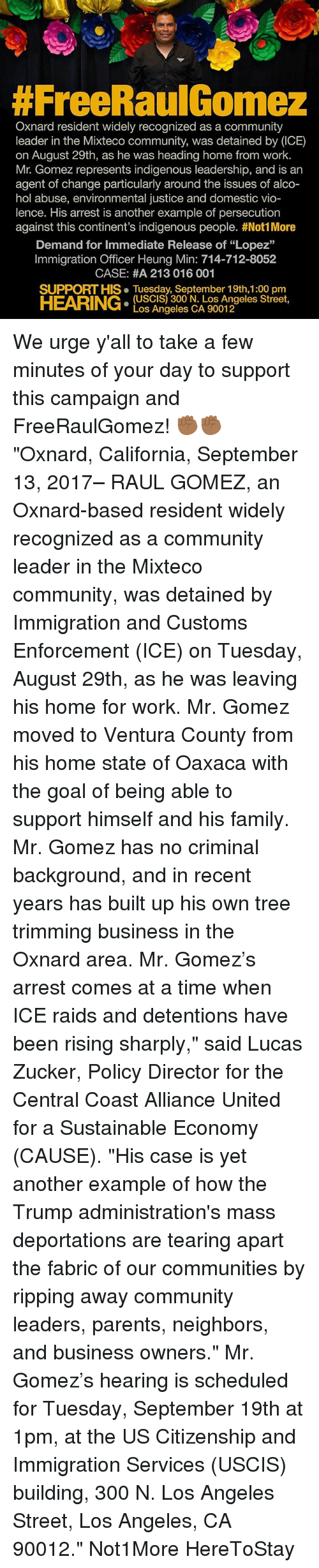 "Community, Family, and Memes:  #FreeRaulGomez  Oxnard resident widely recognized as a community  leader in the Mixteco community, was detained by (ICE)  on August 29th, as he was heading home from work.  Mr. Gomez represents indigenous leadership, and is an  agent of change particularly around the issues of alco-  hol abuse, environmental justice and domestic vio-  lence. His arrest is another example of persecution  against this continent's indigenous people. #Not! More  Demand for Immediate Release of ""Lopez""  Immigration Officer Heung Min: 714-712-8052  CASE: #A 213 016 001  SUPPORT HIS. Tuesday, September 19th,1:00 pm  HEARING:  (USCIS) 300 N. Los Angeles Street,  Los Angeles CA 90012 We urge y'all to take a few minutes of your day to support this campaign and FreeRaulGomez! ✊🏾✊🏾 ""Oxnard, California, September 13, 2017– RAUL GOMEZ, an Oxnard-based resident widely recognized as a community leader in the Mixteco community, was detained by Immigration and Customs Enforcement (ICE) on Tuesday, August 29th, as he was leaving his home for work. Mr. Gomez moved to Ventura County from his home state of Oaxaca with the goal of being able to support himself and his family. Mr. Gomez has no criminal background, and in recent years has built up his own tree trimming business in the Oxnard area. Mr. Gomez's arrest comes at a time when ICE raids and detentions have been rising sharply,"" said Lucas Zucker, Policy Director for the Central Coast Alliance United for a Sustainable Economy (CAUSE). ""His case is yet another example of how the Trump administration's mass deportations are tearing apart the fabric of our communities by ripping away community leaders, parents, neighbors, and business owners."" Mr. Gomez's hearing is scheduled for Tuesday, September 19th at 1pm, at the US Citizenship and Immigration Services (USCIS) building, 300 N. Los Angeles Street, Los Angeles, CA 90012."" Not1More HereToStay"