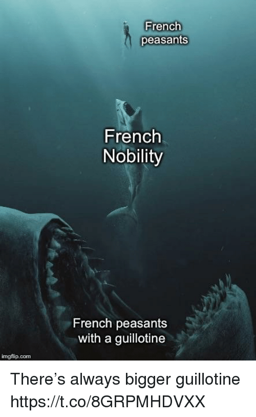 guillotine: French  peasants  French  Nobility  French peasants  with a guillotine  imgflip.conm There's always bigger guillotine https://t.co/8GRPMHDVXX