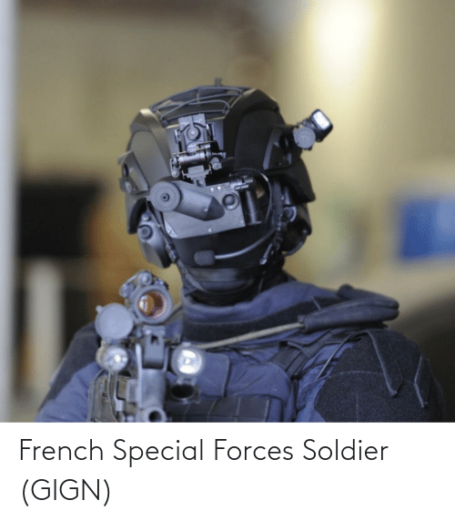 special forces: French Special Forces Soldier (GIGN)