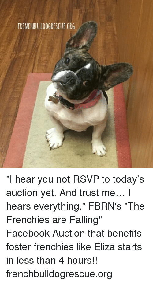 "Fall: FRENCHBULLDOGRESCUE.ORG ""I hear you not RSVP to today's auction yet. And trust me… I hears everything.""  FBRN's ""The Frenchies are Falling"" Facebook Auction that benefits foster frenchies like Eliza starts in less than 4 hours!!  frenchbulldogrescue.org"