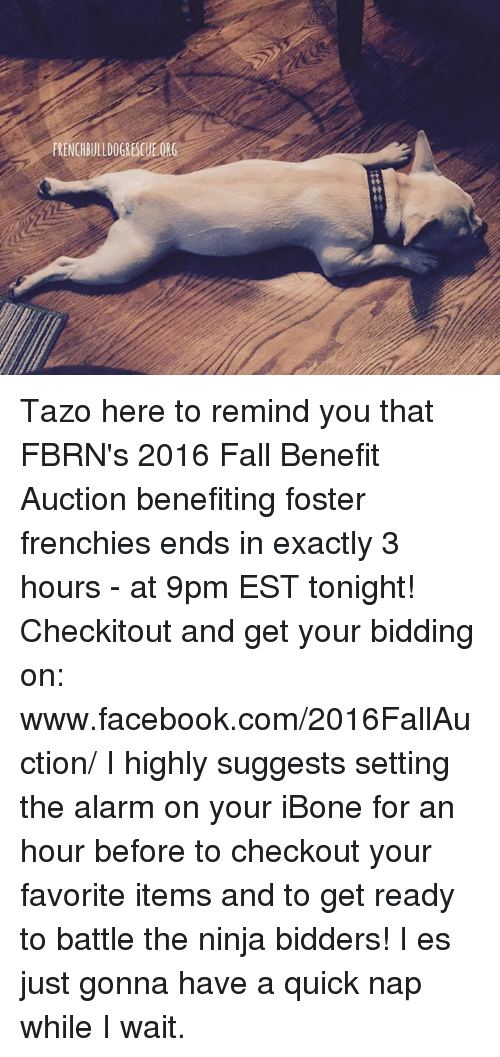 the ninja: FRENCHBULLDOGRESCUE.ORG Tazo here to remind you that FBRN's 2016 Fall Benefit Auction benefiting foster frenchies ends in exactly 3 hours - at 9pm EST tonight! Checkitout and get your bidding on: www.facebook.com/2016FallAuction/  I highly suggests setting the alarm on your iBone for an hour before to checkout your favorite items and to get ready to battle the ninja bidders! I es just gonna have a quick nap while I wait.