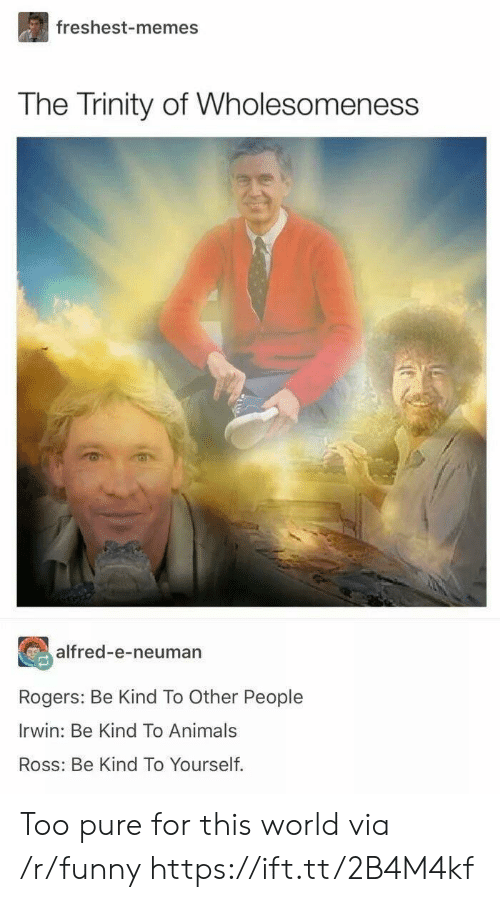 Too Pure: freshest-memes  The Trinity of Wholesomeness  alfred-e-neuman  Rogers: Be Kind To Other People  Irwin: Be Kind To Animals  Ross: Be Kind To Yourself. Too pure for this world via /r/funny https://ift.tt/2B4M4kf