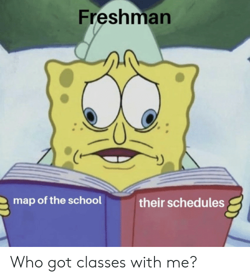 freshman: Freshman  map of the school  their schedules Who got classes with me?