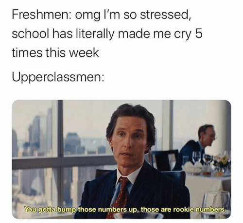 bump: Freshmen: omg I'm so stressed,  school has literally made me cry 5  times this week  Upperclassmen:  You gotta bump those numbers up, those are rookie numbers
