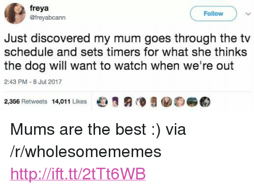 """freya: freya  @freyabcann  Follow  Just discovered my mum goes through the tv  schedule and sets timers for what she thinks  the dog will want to watch when we're out  2:43 PM - 8 Jul 2017  2,356 Retweets 14,011 Likes e  €) <p>Mums are the best :) via /r/wholesomememes <a href=""""http://ift.tt/2tTt6WB"""">http://ift.tt/2tTt6WB</a></p>"""