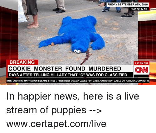 "Cookie Monster, Cookies, and Friday: FRIDAY SEPTEMBER 9TH, 2016  NEW YORK, NY  BREAKING  1:45 PM EST  COOKIE MONSTER FOUND MURDERED  CINNI  DAYS AFTER TELLING HILLARY THAT ""C"" WAS FOR CLASSIFIED  IOTS, LOOTING, MAYHEM ON SESAME STREET PRESIDENT OBAMA CALLS FOR CALM, GOVERNOR CALLS ON NATIONAL GUARD, MI In happier news, here is a live stream of puppies --> www.certapet.com/live"
