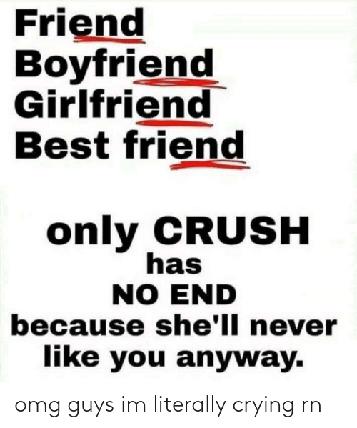 Boyfriend Girlfriend: Friend  Boyfriend  Girlfriend  Best friend  only CRUSH  has  NO END  because she'll never  like you anyway. omg guys im literally crying rn