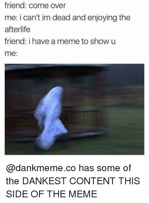 Dankest: friend: come over  me: i can't im dead and enjoying the  afterlife  friend: i have a meme to show u  me: @dankmeme.co has some of the DANKEST CONTENT THIS SIDE OF THE MEME