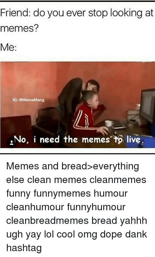 Dank, Dope, and Funny: Friend: do you ever stop looking at  memes?  Me:  IG: MemeMang  No, i need the memes tp live Memes and bread>everything else clean memes cleanmemes funny funnymemes humour cleanhumour funnyhumour cleanbreadmemes bread yahhh ugh yay lol cool omg dope dank hashtag