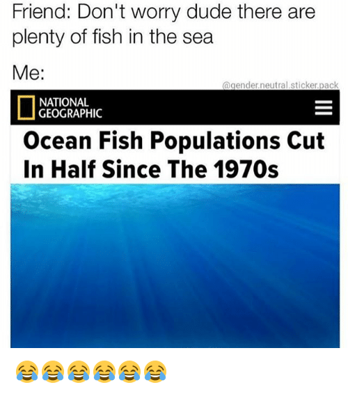 Dude, Fish, and National Geographic: Friend: Don't worry dude there are  plenty of fish in the sea  Me:  @gender.neutral.sticker.pack  NATIONAL  GEOGRAPHIC  Ocean Fish Populations Cut  In Half Since The 1970s 😂😂😂😂😂😂