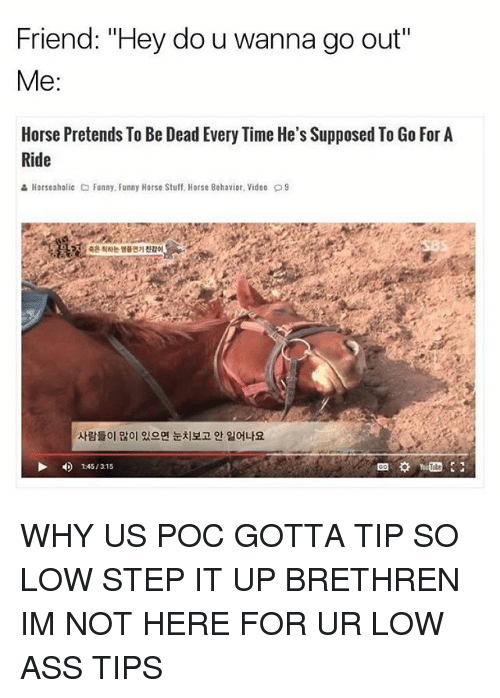 """Ass, Funny, and Horse: Friend: """"Hey do u wanna go out""""  Me  Horse Pretends To Be Dead Every Time He's Supposed To Go For A  Ride  Horseaholic Co Funny. Funny Horse Stuff, Horse Behavior. Video D9  1 45/315 WHY US POC GOTTA TIP SO LOW STEP IT UP BRETHREN IM NOT HERE FOR UR LOW ASS TIPS"""