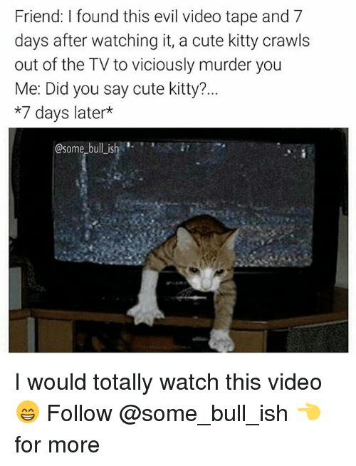 Cute, Memes, and Video: Friend: I found this evil video tape and 7  days after watching it, a cute kitty crawls  out of the TV to viciously murder you  Me: Did you say cute kitty?...  *7 days later  @some bull ish I would totally watch this video 😁 Follow @some_bull_ish 👈 for more